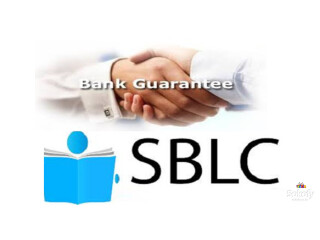 We are direct providers of Fresh Cut BG, SBLC, WE MOVE FIRST.