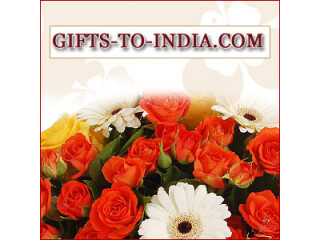 Order the Best Valentine's Day Gifts Online and Cherish Valentine's Day with your Love Partner